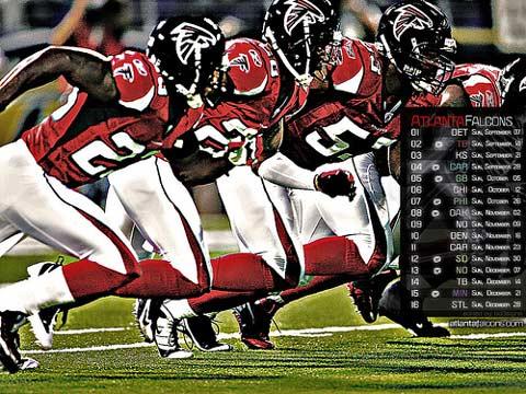 Atlanta Falcons 2008-2009 Season.