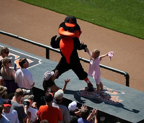 Baltmore Orioles Mascot.