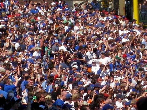 Cubs Fans Go Wild.