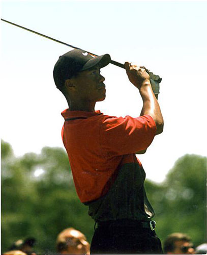Best Sports Pictures Tiger Woods.